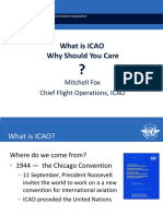 2-what-is-icao