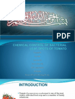 disease incidence and chemical control of bacterial leaf spot of tomato in swat
