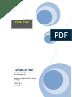 Laporan PBK (pembelajaran berwawasan Kemasyarakatan) PDKG 4306
