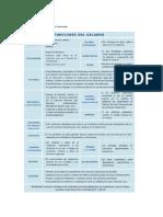 TEMA 1.El Celador.funciones Generales Comprimido