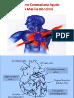 8 Doença arterial coronariana crônica.pdf