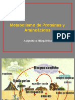 Metabolismo de Aa y Prot