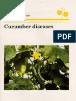 Cucumber Diseases