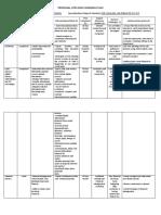 PLLP Matrix and Reflection Paper.docx
