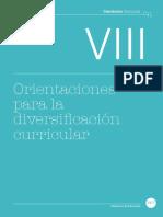 58. Diversificacion Curricular