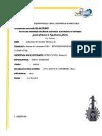 ENSAYO EN LABORATORIO Nº 003.docx