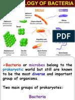 Bacterial Morphology.pdf