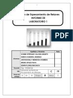 Informe N°1 Analisis de Espesamiento de Relaves.docx