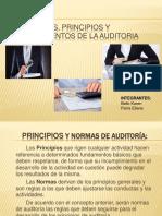 Normas Principios y Procedimientos