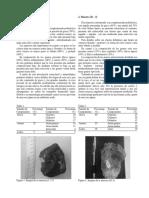 Informe rocas siciclasticas.docx