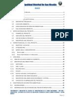 Estudio-de-Impacto-Transitabilidad-San-Nicolas.docx