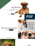 edrl 443 jamies book pdf 2