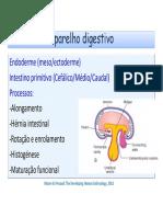 Desenvolvimento Do Aparelho Digestivo