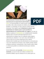 importancia de la Reforestacion.docx