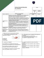 PRUEBA DIAG. CIENCIA 2019.docx