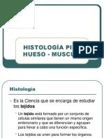 Histologia Piel Musculo Oseo-convertido