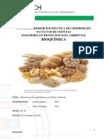 Carbohidratos en el Medio Ambiente .docx