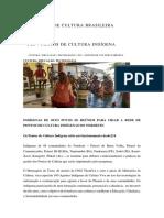 DIVERSIDADE CULTURA BRASILEIRA.docx