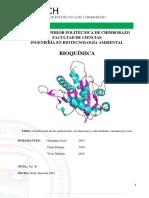 Clasificacion de los Aminoácidos.docx