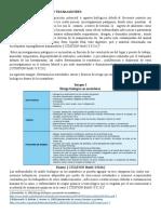 IMPLICACIONES A LA SALUD (2).docx