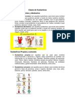 Clases de Sustantivos.docx