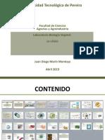 Segundo laboratorio.pptx