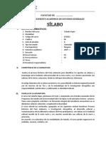 SILABO CATEDRA SIPAN (2).docx