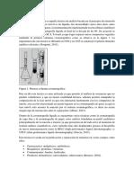 Cromatografía liquida introduccion.docx