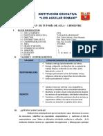 PLAN  BIM  TUTORIA - 2019.docx