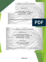 Presentación de PowerPoi_2016-10-29 01-51-25001.PPTX