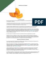 Beneficios de la Calabaza y formas de consumo.docx