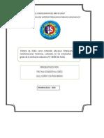 INVESTIGACION ETNOGRAFICA.docx