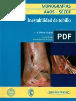 Inestabilidad del tobillo.pdf