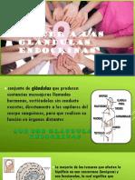 Cancer a Las Glándulas Endocrinas
