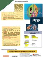 Pancreatitis Aguda Patogenesis