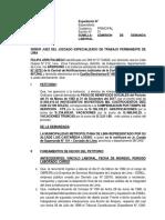 FELIPA URRUTIA MEGO ULTIMO.docx