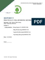 report 5