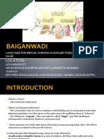Baiganwadi Original(1)