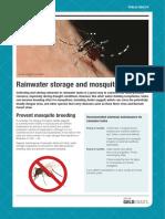 Rainwater Storage Mosquito Breeding