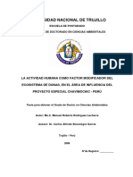 TESIS DOCTORAL-RODRIGUEZ LACHERRE.pdf