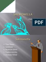 Salmonella Ppt Gigih