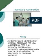 CLASE 14 - ASFIXIA RN.ppt