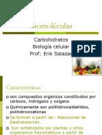 Biomoleculas carbohidratos