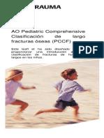 2008-09-PediatricClassificationBrochure.en.es.pdf