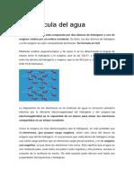 La molécula del agua.docx