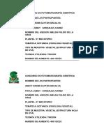 MEDIA CARTA HOJA DE UVA.docx