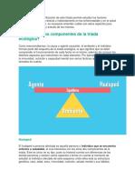 TRIADA ECOLOGICA.docx