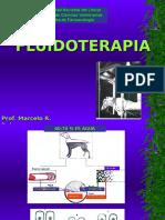 Fluido-Terapia en bovinos