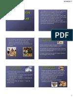 ALIMENTACION PREESCOLAR.pdf