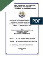 TESIS MAESTRIA ETTY MARDELI IBAÑEZ ZAVALETA.pdf